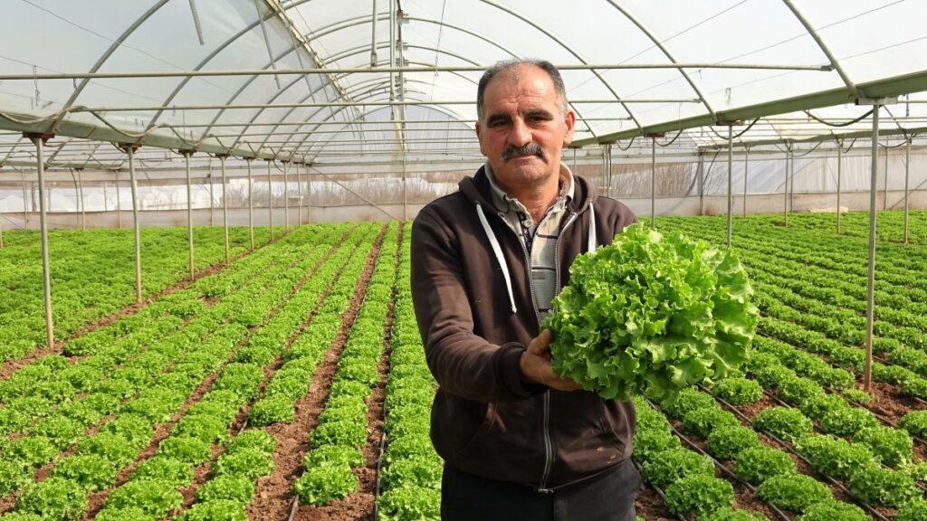 Tokat'ın tamamı sera ile kaplı köyü 'Küçük Antalya' olarak anılıyor