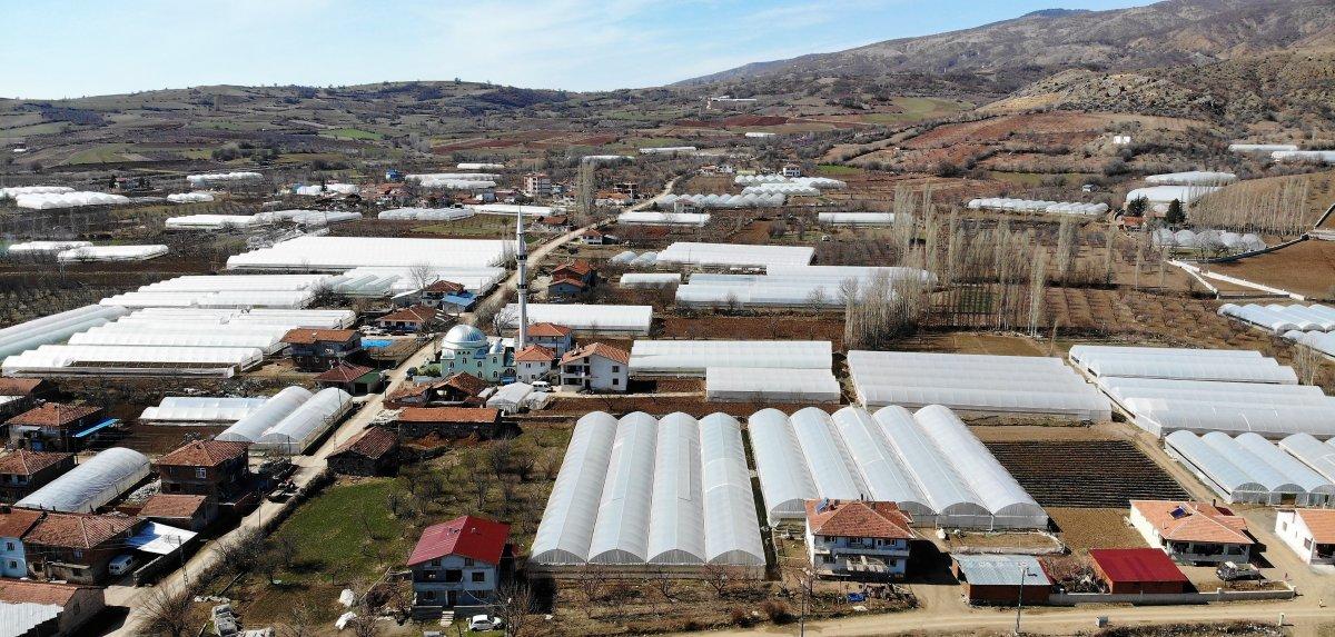 Tokat ın tamamı sera ile kaplı köyü Küçük Antalya olarak anılıyor #3